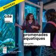 """Carte Les expositions avec visite guidée """"promenades aquatiques"""""""