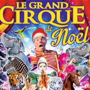 Le Grand Cirque De Noël À Avignon