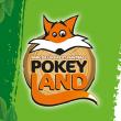 POKEYLAND 2019 - PASS SAISON