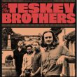 Affiche The teskey brothers