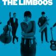 Concert JAKE LA BOTZ + THE LIMBOOS + MOJO JOJO'S