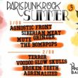 Affiche Paris punk rock summer 3