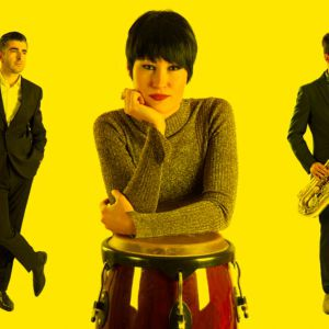 The Limboos ( Exotic Rythm And Blues )