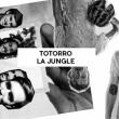 Concert TOTORRO + LA JUNGLE à PARIS @ Badaboum - Billets & Places