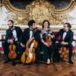 Spectacle Quatuors Haydn 8e