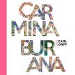 Concert CARMINA BURANA 2019 à GIF SUR YVETTE @ SUPELEC - Billets & Places