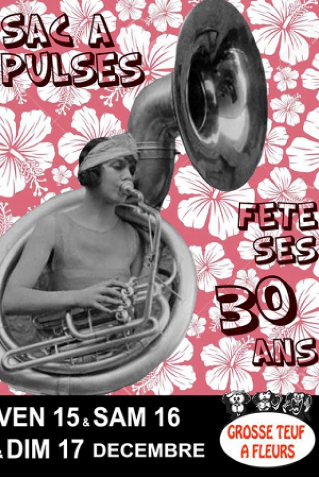 Sac à Pulse fête ses 30 ans @ BAIE DES SINGES - Cournon d'Auvergne