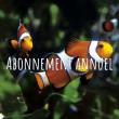 ABONNEMENT annuel Grand Aquarium de Saint-Malo