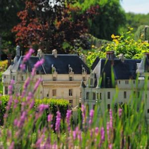 Pass annuel @ Mini-châteaux  - AMBOISE