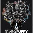 Concert SNARKY PUPPY à Toulouse @ ZENITH TOULOUSE METROPOLE - Billets & Places