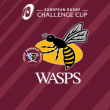 Match UBB - WASPS RUGBY CCUP