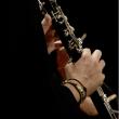 Concert Musique de Chambre- Ponchielli, Bassi, Mendelssohn
