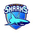 Match CHOLET BASKET/ANTIBES SHARKS