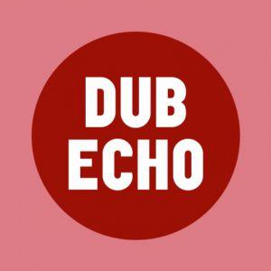 DUB ECHO #19 : BRAINLESS SOUND SYSTEM + MINIMAN... @ TRANSBORDEUR - Villeurbanne