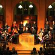 Spectacle LA CETRA D'ORFEO FETE TELEMANN à MALONNE @ ABBAYE MUSICALE DE MALONNE - Billets & Places