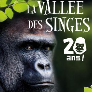 La Vallée des Singes 2018 @ La Vallée des Singes - Romagne