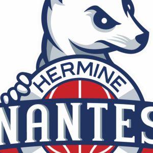 Ada Blois Basket 41 Vs Nantes - Pro B