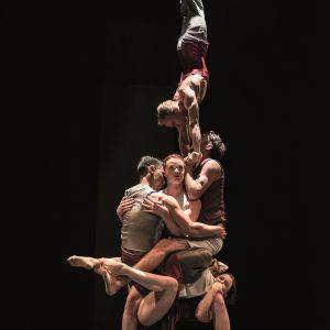 DRIFTWOOD  @ Le Colisée - Théâtre de Roubaix - ROUBAIX