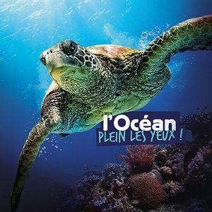 Visite De L'océarium - Aquarium Du Croisic