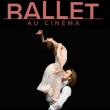 Projection LA DAME AUX CAMELIAS à LE PLESSIS ROBINSON @ Theatre de l'Allegria - Billets & Places