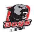 Match Etoile Noire de STRASBOURG vs Dogs de CHOLET