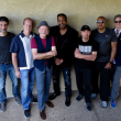 Concert AVERAGE WHITE BAND