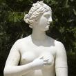 Visite guidée : La galerie des Sculptures et des Moulages