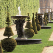 Visite Guided tour : gardens and groves