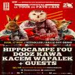 Concert Hippocampe Fou x Dooz Kawa x K. Wapalek