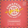 Concert SYNAPSON à Villeurbanne @ TRANSBORDEUR - Billets & Places