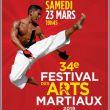 Affiche 34ème festival des arts martiaux