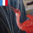 Visite contée - Le fabuleux voyage d'un flamant rose à Lunettes