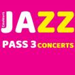FESTIVAL COULEURS JAZZ - PASS 3 CONCERTS GRANDE SALLE