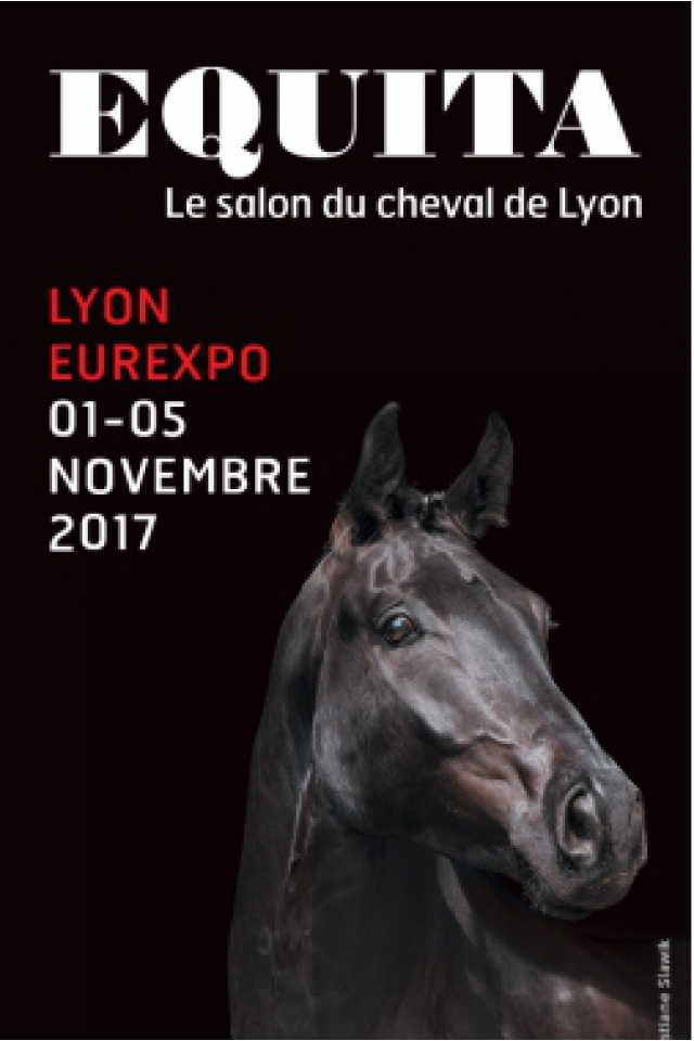 LONGINES FEI WORLD CUP TM @ EUREXPO LYON - CHASSIEU