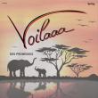 Festival VOILAAA /CHARLOTTE ADIGERY