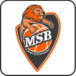 Match DEMI FINALE - MATCH 2 vs LE MANS à  STRASBOURG @ LE RHENUS - Billets & Places