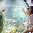 Expo Promenades aquatiques