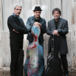 Concert SEBASTIEN SUREL, VINCENT SEGAL ET TOMAS GUBITSCH à REZÉ @ L'AUDITORIUM - Billets & Places
