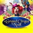 Affiche Cirque holiday - le grand cirque de noël - villeneuve d'ascq
