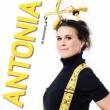 Spectacle Antonia de Rendinger pose les fondations