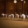 Visite Billet Château et spectacle de l'Académie équestre