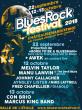 BLUES ROCK FESTIVAL